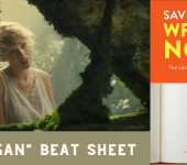 "Save the Cat! Beat Sheet Analysis of Taylor Swift's ""Cardigan"" Video"